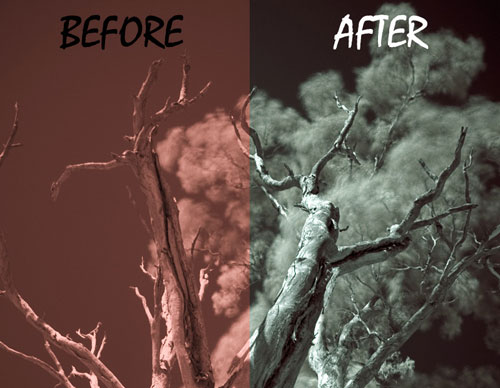 Post-Processing Infrared Photographs in Photoshop